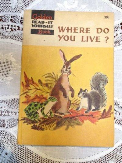 画像1: 洋書 どこに住んでるの? WHERE DO YOU LIVE?  1960年 ハードカバー