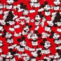 Disney Mickey Mouse, Hand made Cartin