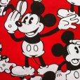画像3: ディズニー ミッキーがいっぱい  手作りカーテン (3)