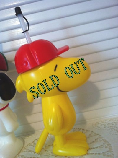 画像2: sold 30% OFF! Woodstock, Great America California 2010, Plastic Drink Bottole