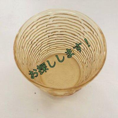 画像3:  sold ファイヤーキング ソレノ ハニーゴールド グラス(S)