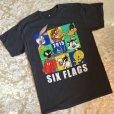 画像1: 古着 Tシャツ シックス・フラッグス 2,015年 M (1)
